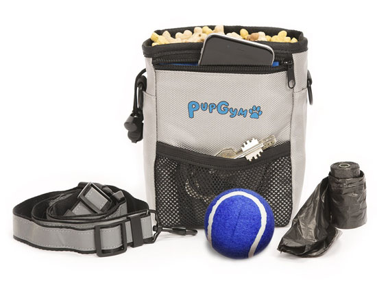 PupGym Dog Treat Pouch and Training Bag