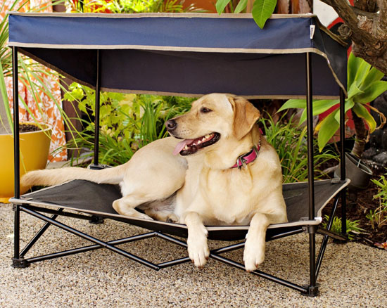 Quik Shade Outdoor Instant Pet Shade with Elevated Mesh Bed