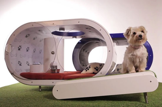 Samsung Smart Dog House