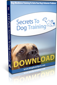 How to Stop Dog From Digging Holes - Secrets to Dog Training