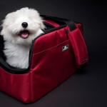 Sleepypod Atom Modern Pet Carrier Design Is Based on The Famous Sleepypod Air