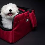 Sleepypod Atom Modern Pet Carrier Design Is Based on The Famous Sleepypod Air