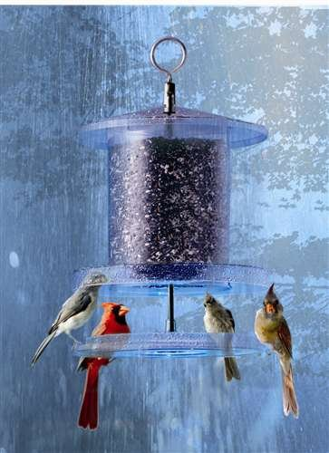 Songbird Essentials All Weather Feeder 6 Quart