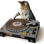 Suck UK Cat Scratcher : There's A Little DJ in The House!