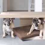 Modern Tavolato Pet Bed Doubles as Coffee Table