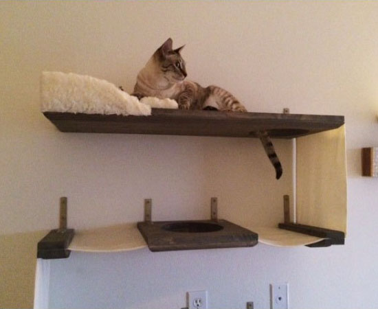 Three Level Cat Wall Bunker
