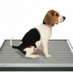Modern and Stylish UGODOG Indoor Dog Potty
