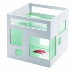 Modern Umbra FishHotel Aquarium by Teddy Luong