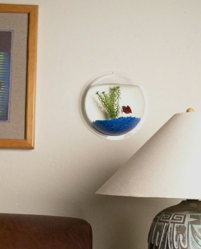 Wall Mounted Betta Fish Tanks Wall Mount Fish Aquarium