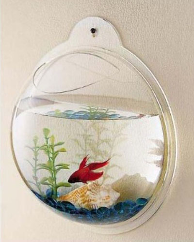 Wall Mount Fish Aquarium