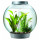 BiOrb Aquarium Kit with Halogen Light is Very Easy to Maintain