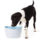 Hagen Dogit Design Fresh and Clear Dog Drinking Fountain Features Multi-Stage Filtration For Fresh and Clean Drinking Water