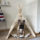 Modern Minicamplt Pet Teepee with Poles and Pad for Dog