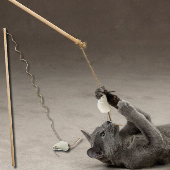 Zanies Modern Eco-Friendly Cat Teaser
